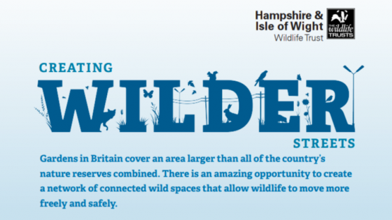 """Creating wilder streets campaign logo from the Hampshire and Isle of Wight Wildlife Trust, with accompanying text: """"Gardens in Britain cover an area larger than all of the country's nature reserves combined. There is an amazing opportunity to create a network of connected wild spaces that allow wildlife to move more freely and safely."""""""